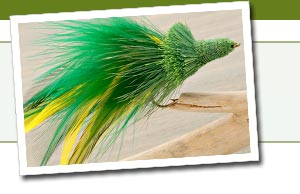 Fly-tying materials, including feathers and capes, hooks, bodies, wings, tails, vises, and fly-tying kits